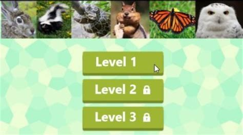 windows  picture guessing game app animal quiz