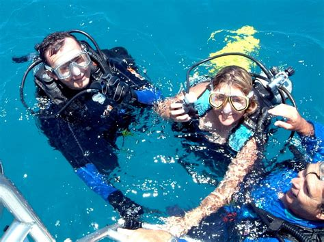 great barrier reef dive trips cairns tours attractions the cairns port douglas