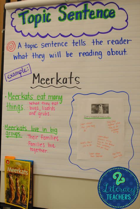 Topic And Concluding Sentences Worksheet