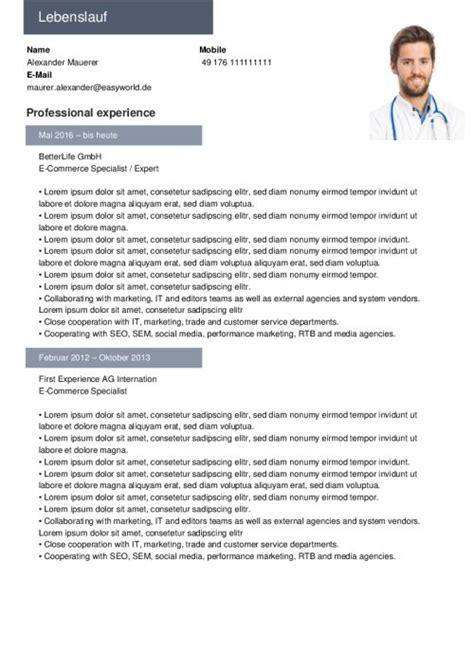 Lebenslauf Muster Viel Berufserfahrung Lebenslauf Vorlagen Muster Kostenloser Als Pdf