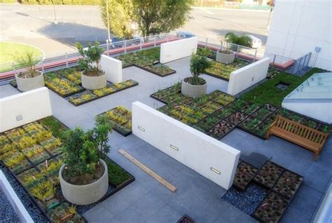 roof garden plants 27 roof garden design ideas inspirationseek com