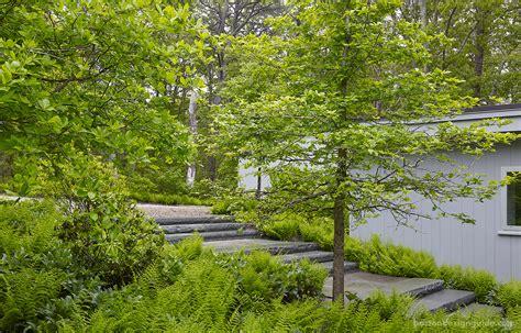 boston landscape architecture firms lush layered landscapes boston design