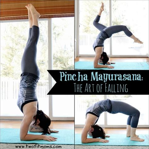 tutorial yoga iyengar 44 best images about pincha mayurasana on pinterest yoga