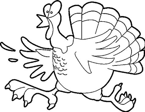 Free Turkey Feather Coloring Pages Turkey Feathers Coloring Pages