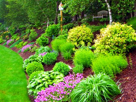 hill landscaping landscape design ideas packages diy