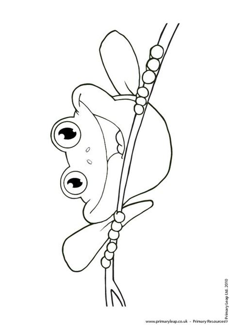 Red Eyed Tree Frog Jumping Coloring Page Coloring Eyed Tree Frog Coloring Page