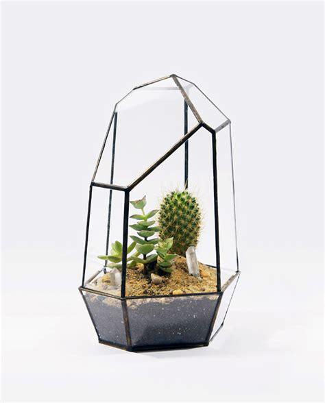 Terrarium Planter by Home Gardening Score Solder Stylish Planters Terrariums