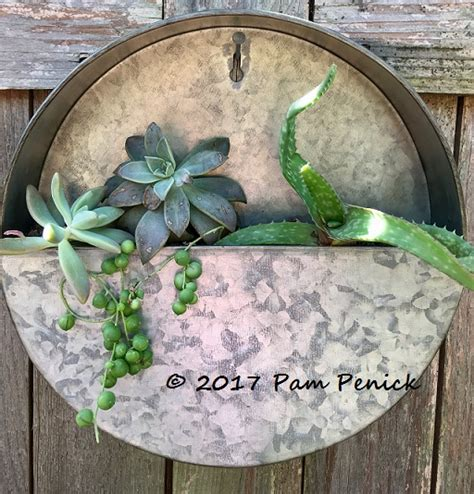 comment on new galvanized wall planters hold succulent