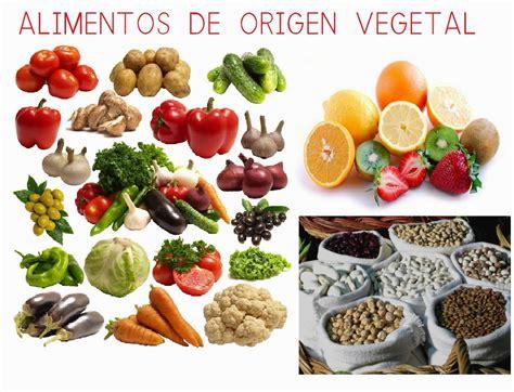 imagenes de origen animal vegetal y mineral el corral de infantil alimentos de origen animal y vegetal