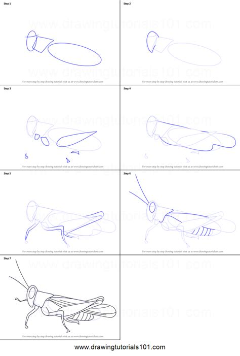 how to draw doodle step by step how to draw a cricket printable step by step drawing sheet