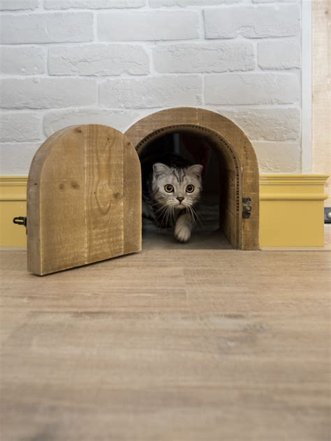 cat door for interior door an eclectic loft designed for cats and their humans