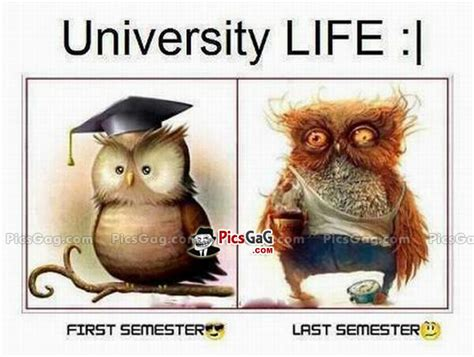 Uni Student Memes - university life funny student and this funny student life
