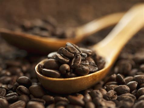 Caffe Molinari Riserva Gourment Italia parla italiano o melhor caf 232 brasileiro wall international magazine