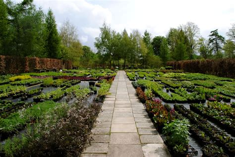 Wholesale Gardens by Babylon Plants Wholesale Plant Nursery Oxfordshire