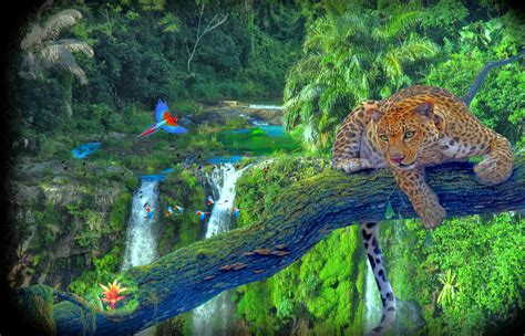 imagenes de paisajes bonitas image gallery hermosos y paisajes