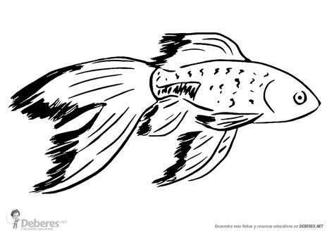 diferentes imagenes para dibujar bonitas imagenes para dibujo bonito de pez para aprender a dibujar