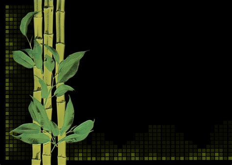 bamboo plant digital creation  image  pixabay