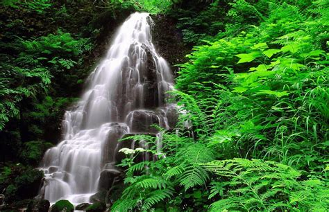 imagenes para fondo de pantalla naturaleza fondo pantalla cascada y naturaleza