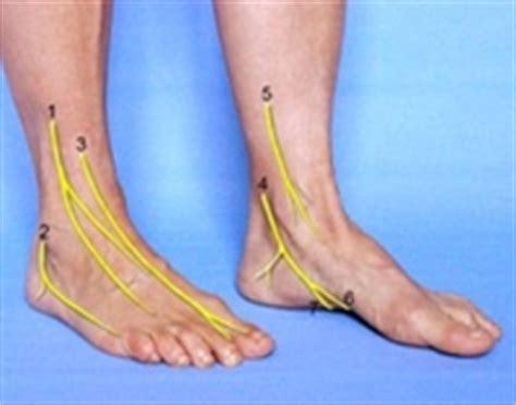 tendinite caviglia interna caviglia e piede fisioterapia rovere