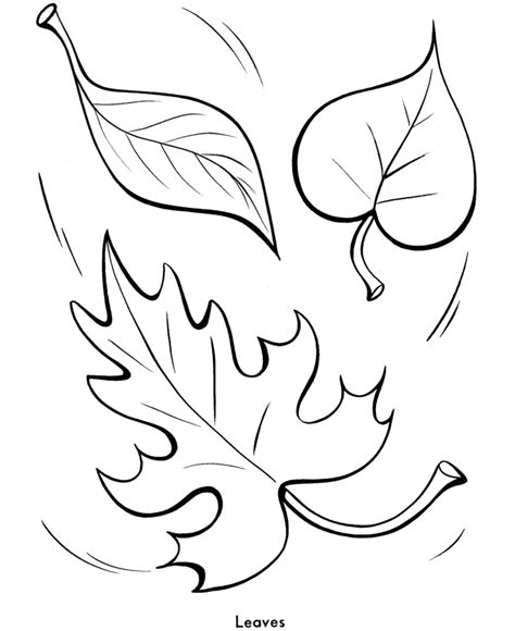 coloring page of a fall leaf easy shapes coloring pages fall leaves printables