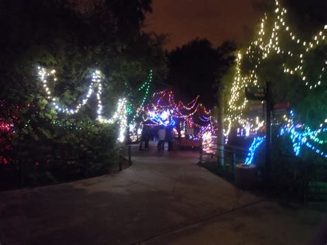 tucson zoo lights month in tucson december 1 31 2011 from to