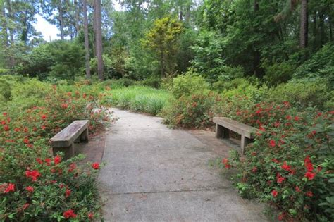 Mobile Botanical Gardens Mobile Al Path Resting Area