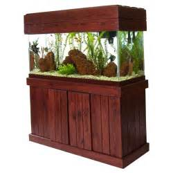 Paradise Pets: Pine Majesty Series Stands