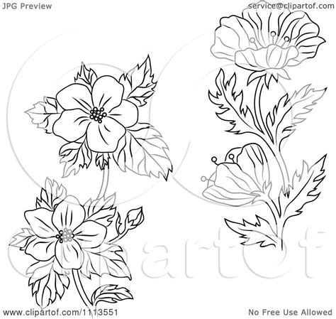 buttercup flower tattoo designs clipart black and white buttercup and dogwood flowers