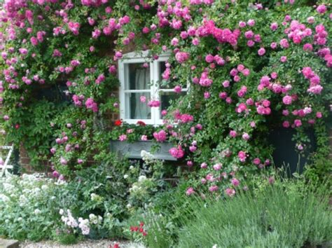 Rosa Cottage by Hotel R Best Hotel Deal Site