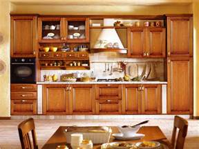 Kitchen Cupboard Interiors by Kitchen Cabinet Designs 13 Photos Kerala Home Design
