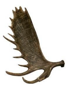 Elk Antler Chandeliers Moose Shed Antler