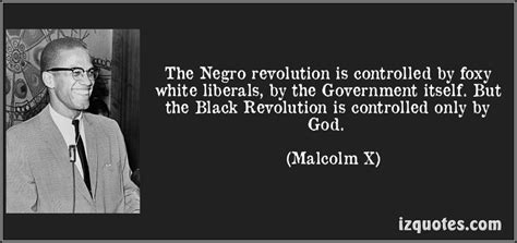 malcolm x from political eschatology to religious revolutionary studies in critical social sciences books malcom x white liberals are foxes page 2 stormfront