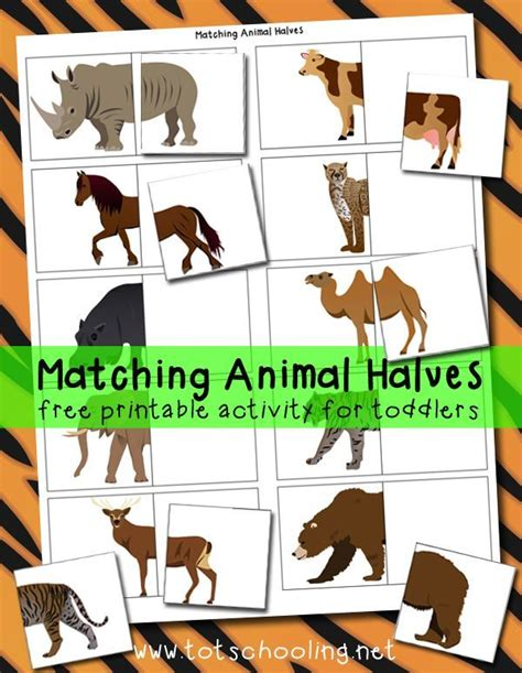 printable zoo animal matching game 17 best images about zoo theme weekly home preschool on
