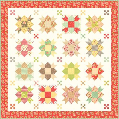 Fig Tree Quilt Patterns by 1000 Images About Fig Tree Quilts On