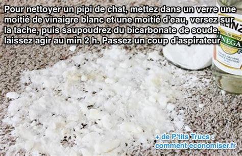comment nettoyer urine de sur canapé tissu comment nettoyer urine de sur canape tissu 28