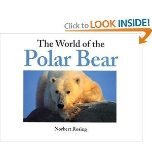 the adventures of the polar books 17 best images about antartica global adventure day on