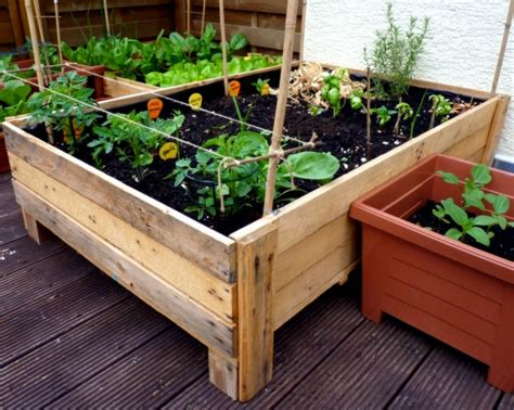 vegetable planter box container gardening diy planter box from pallets