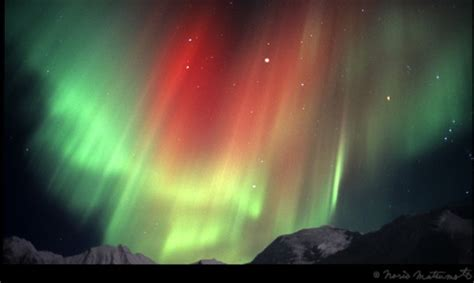 Lapland Northern Lights Tours Aurora Borealis Excursions Where Can I Go To See Lights