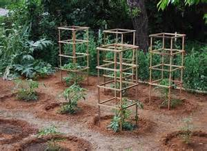 Tomato cage house and garden pinterest