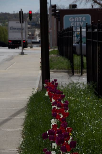 challenge kansas city home tulips on troost challenges view of avenue as unsafe