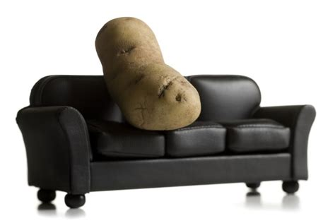 synonym for couch potato sofa potato 28 images couch potato sofa with return