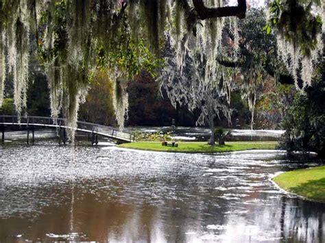 middleton place plantation garden usa gardens parks