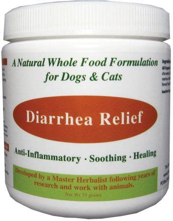 remedies for dogs with diarrhea 1000 ideas about diarrhea remedies on milk thistle uses remedies and