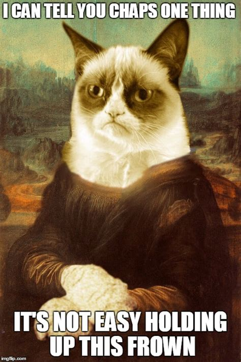 Frowning Cat Meme - frown cat meme frown cat meme grumpy cat meme imgflip