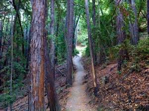 Hiking Trails Related Keywords Suggestions For Hiking Trails