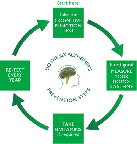 preventing alzheimer s alzheimer s factors prevention steps and foods that prevent or alzheimer s recipes for alzheimer s prevention diet essential spices and herbs books 6 prevention steps