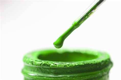 green paint green washing are you getting what you pay for or a bunch of bull no bull beauty cutting