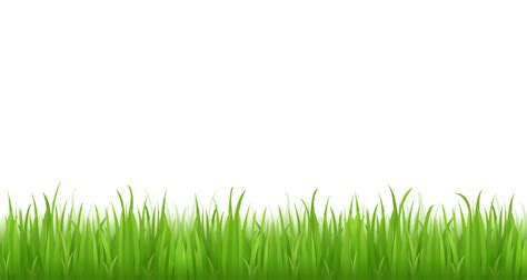 grass clipart free nature clipart grass border pencil and in color nature