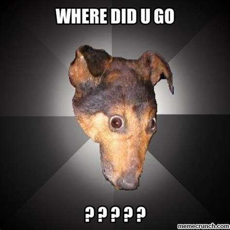 Confused Dog Meme - confused dog