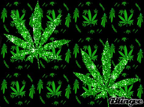 imagenes chidas weed marihuana picture 56544071 blingee com